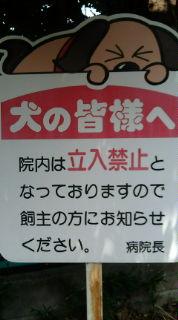20100815105117.jpg